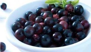 Oprah Winfrey mengakibatkan acai Berry selaku  ramuan pelangsing yang tokcer Kenyang Lebih Lama dengan Diet Acai Berry