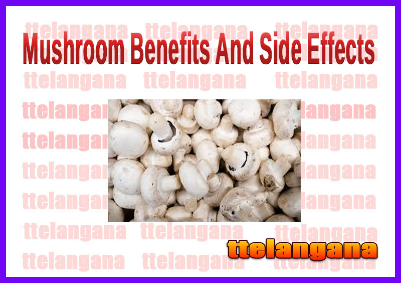 Mushroom Benefits And Side Effects