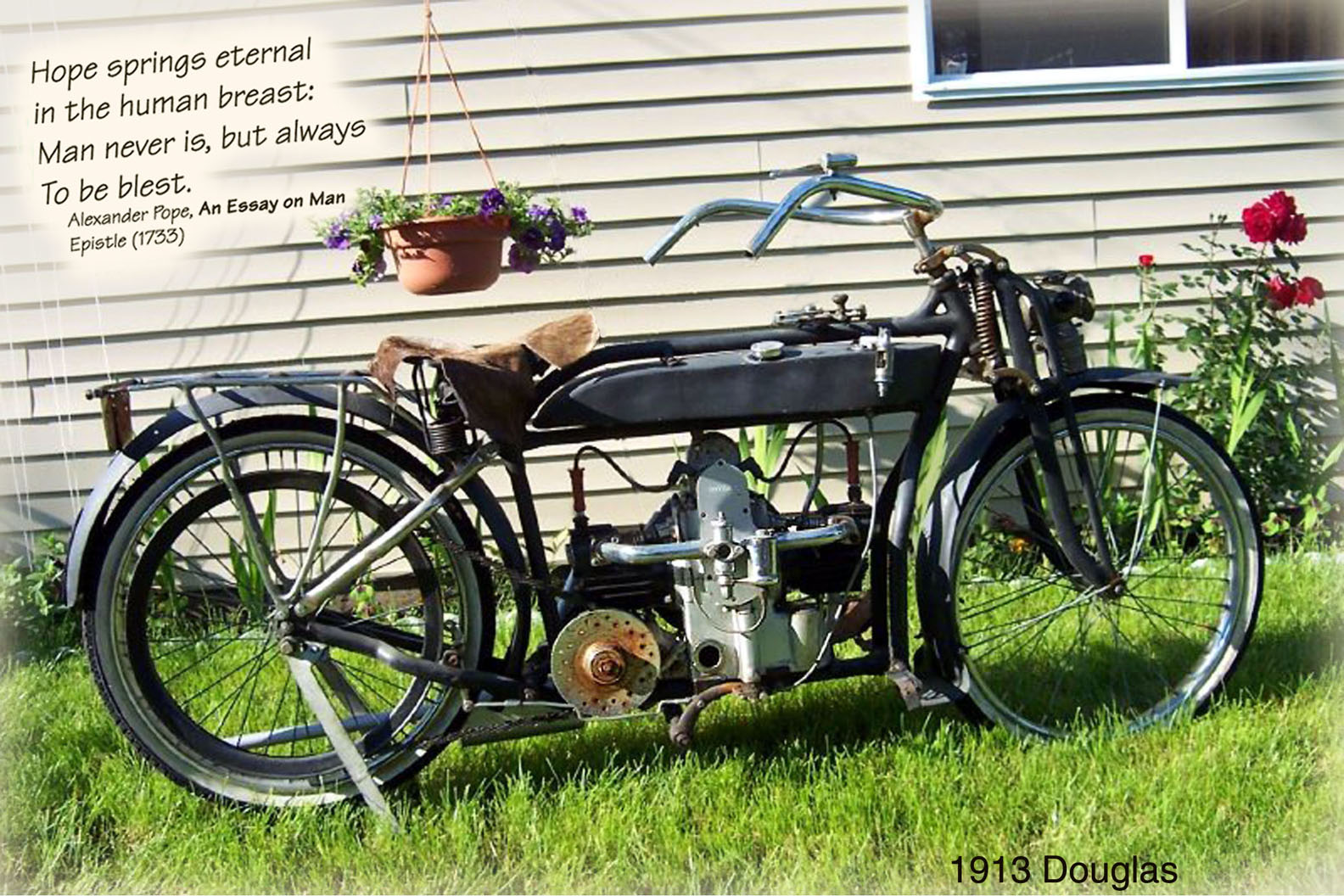 Motorcycle in garden.