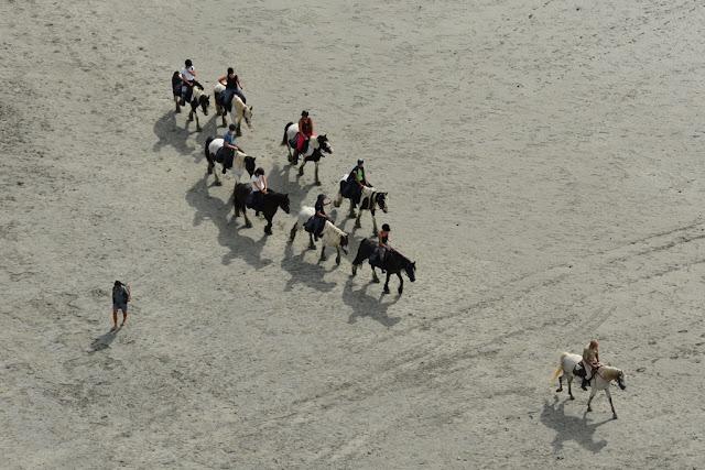 Views Mont Saint-Michel horse back riding