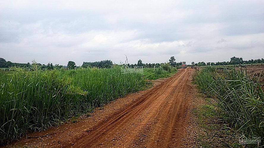 Đất sào Hưng Thịnh