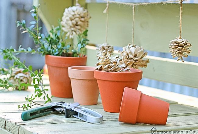 planting in terracotta pots