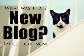 6 Hal yang harus dilakukan setelah membuat blog baru khusus pemula