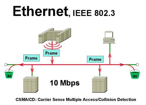 มาตรฐาน เครือข่าย Ieee 802 3 Ethernet Network Ieee 802 3