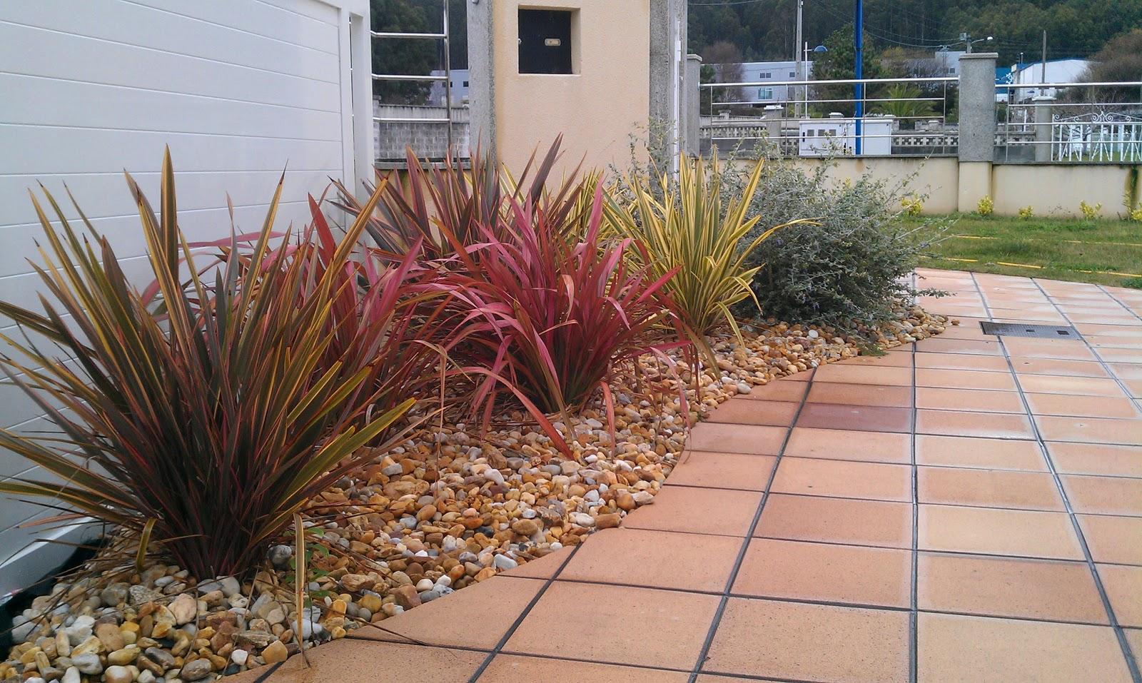 Entorno ambiental - Plantas para arriates ...