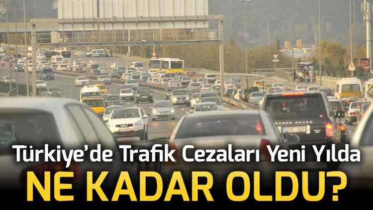 Türkiye'de Trafik Cezaları 2020 Yılında Ne Kadar Oldu?