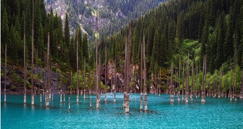 zanimljivosti-putovanja-priroda-planine-šuma-jezero-kanada