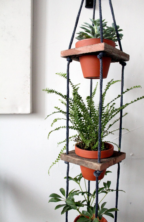 Indoor Hanging potted plants | Gardening Forums on Hanging Plant Pots Indoor  id=18998
