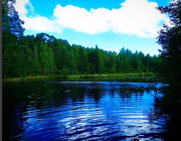 Jezioro gdzieś w leningradzkiej obłasti.