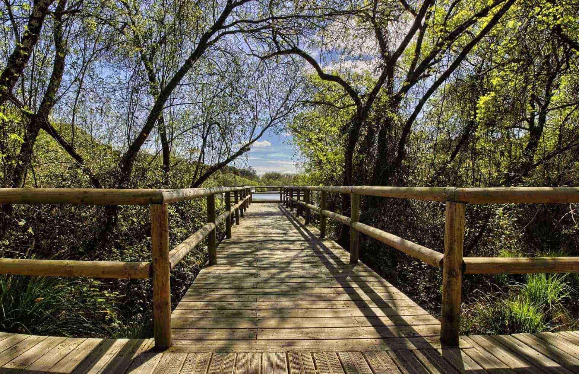 benefits-of-ecotourism