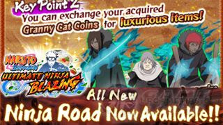 What is Ninja Road (Game Mode)?