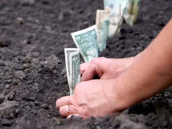 Земля и денеги