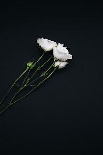 صور تصميمات سوداء اللون