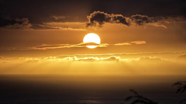 Могло ли Солнце потерять звезду-близнеца?