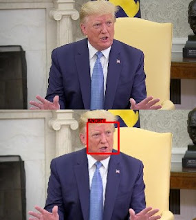 Trump emotion detection