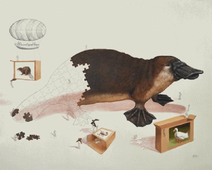 01-Platypus-Ricardo-Solis-Surreal-Illustrations-of-Animals-in-Mid-Construction-www-designstack-co