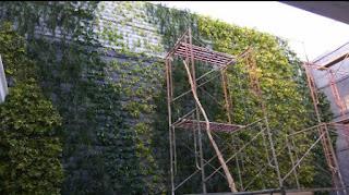 Taman dinding - garden style