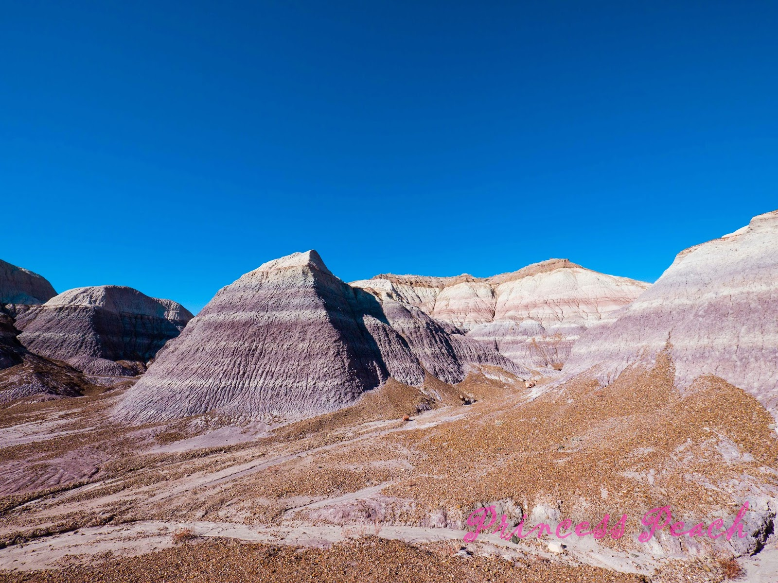 Petrified-Forest-National-Park-石化森林國家公園-Badlands