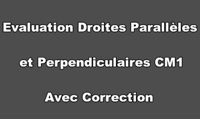 Evaluation Droites Parallèles et Perpendiculaires CM1 Avec Correction