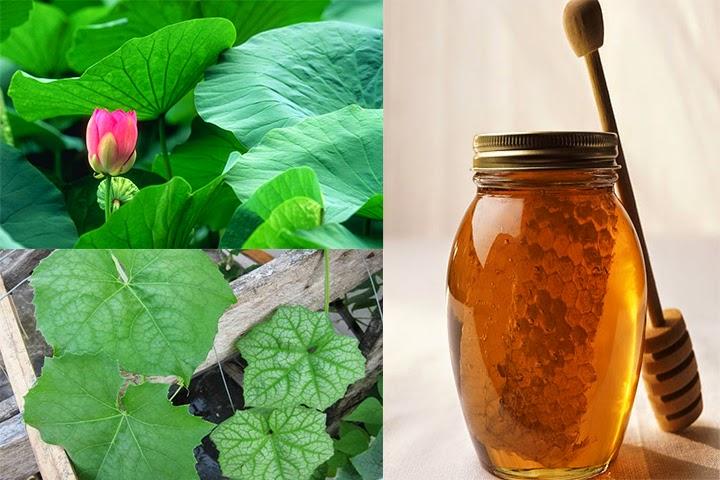 Cách trị tàn nhang tại nhà hiệu quả từ mật ong 4