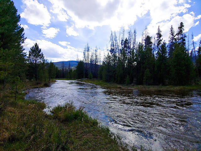 River flowing away through foliage and trees with a blue, cloudy sky in the background