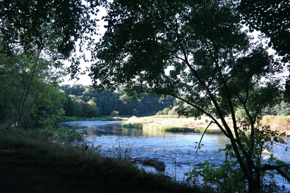 River Don from Seaton Park
