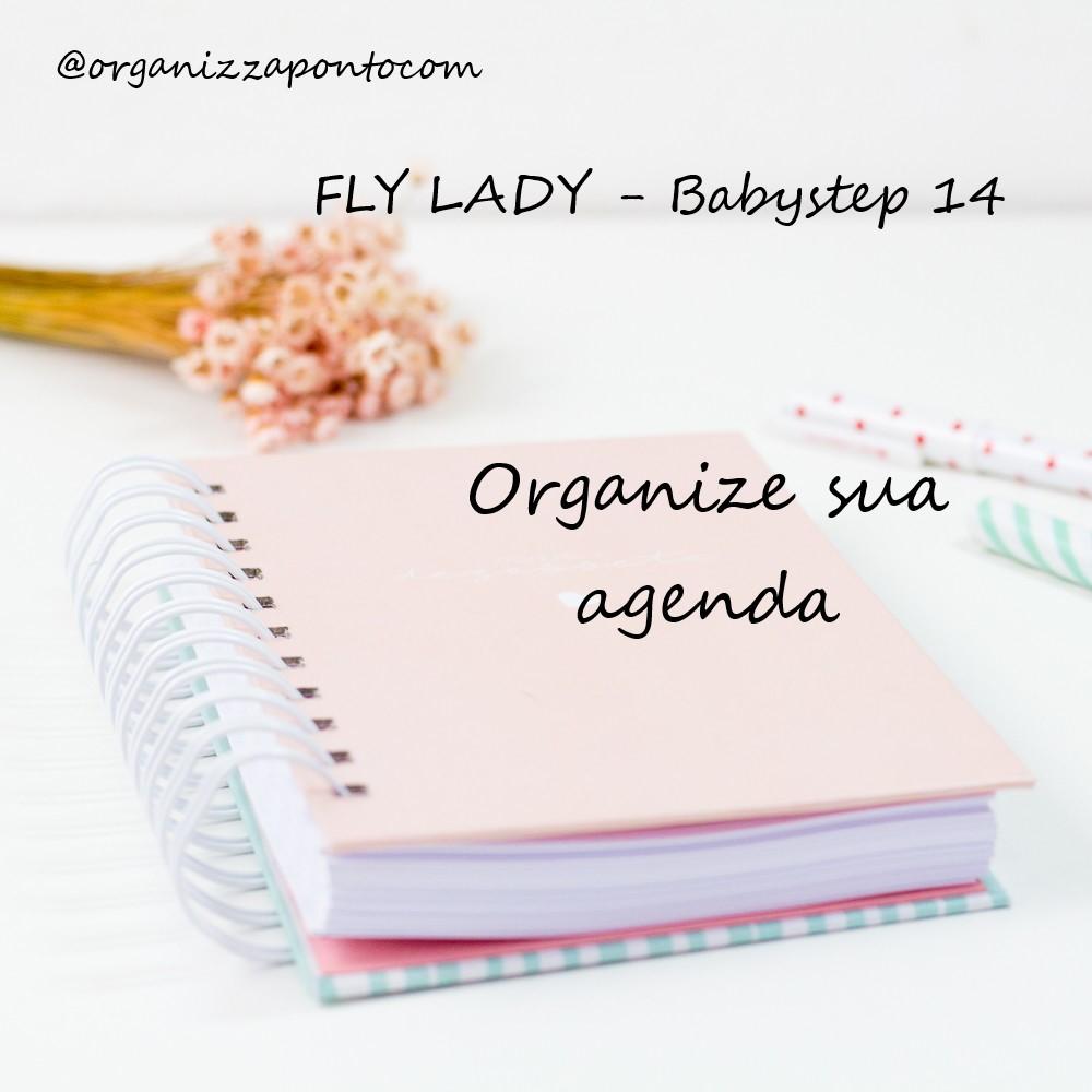Calendario Flylady.Organizzapontocom Fly Lady Babystep 14 Organize Sua Agenda