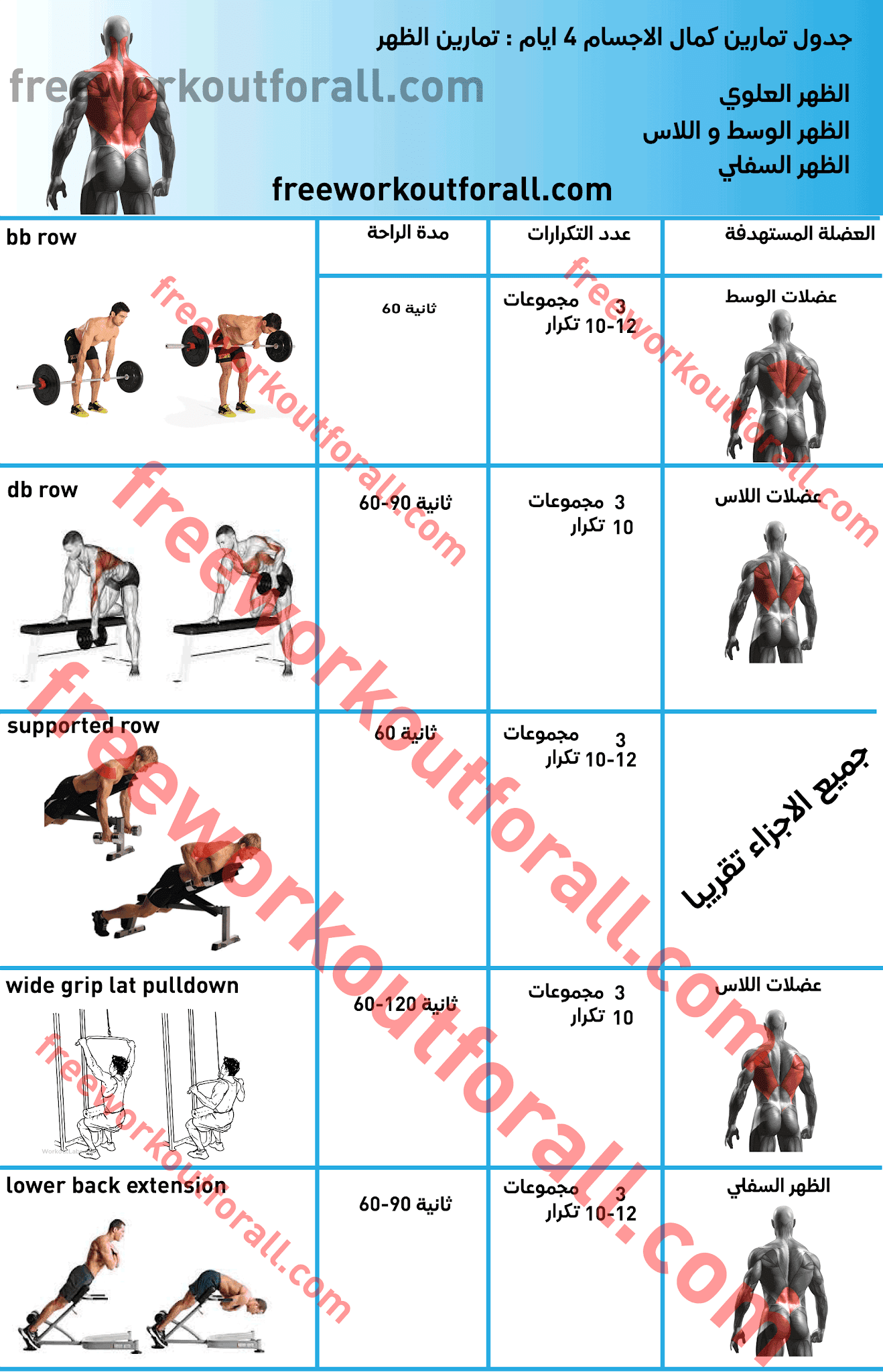 جدول تمارين كمال الاجسام 4 ايام