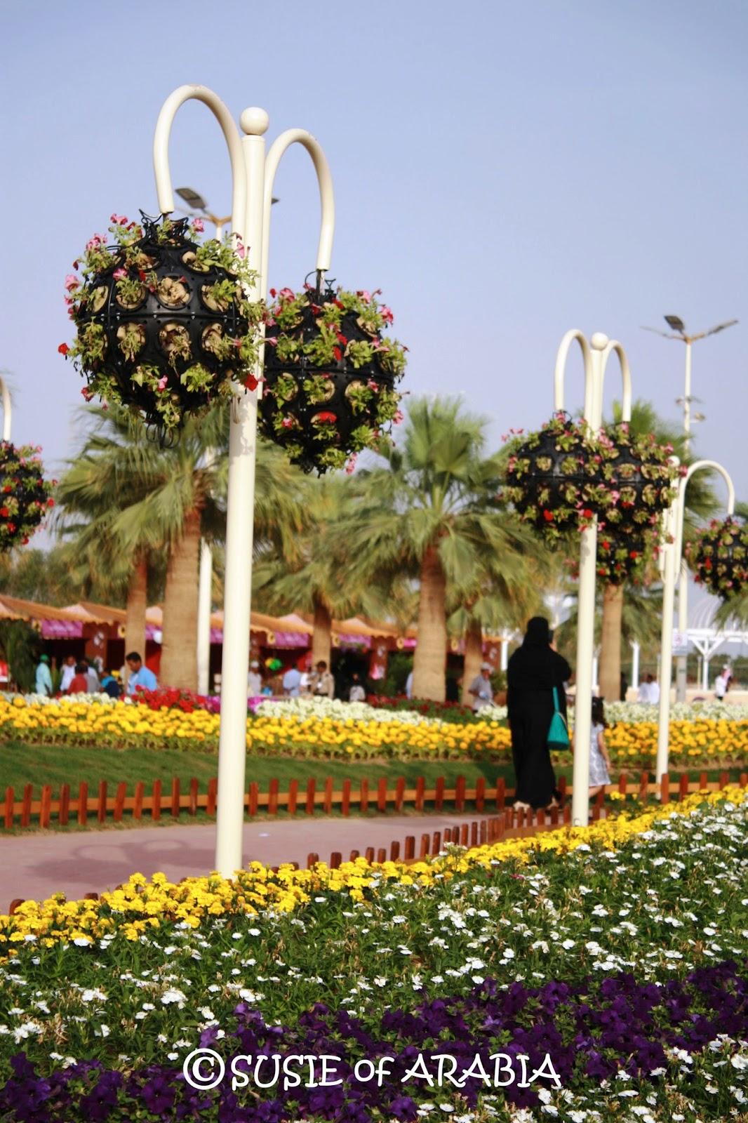 Jeddah Daily Photo: Yanbu: Hanging Flower Baskets