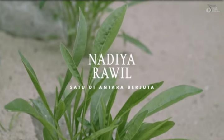Nadiya Rawil - Satu Di Antara Berjuta