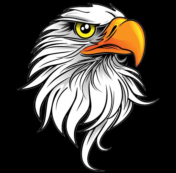bald eagle art, Bald Eagle Free content, Eagle Save, animals, fauna png by: pngkh.com