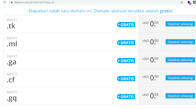 free domain freenom seumuur hidup