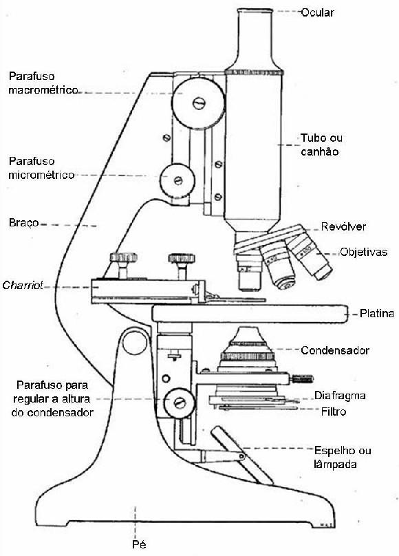 Microscópio | o Que é Microscópio?
