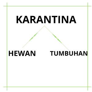 Karantina Impor atau Ekspor di Indonesia