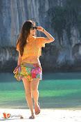 Mannara Chopra Rogue Stills-thumbnail-4