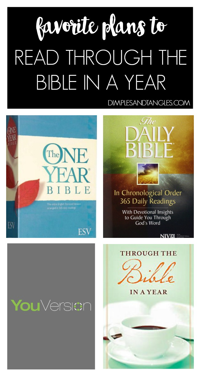 one year bible, devotionals, devotional books, chronological bible, youversion, read through the Bible in a year