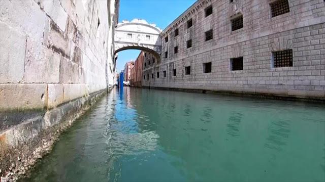 COVID-19 permite apreciar ecosistema acuático de Venecia