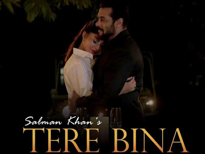 TERE BINA LATEST  SALMAN KHAN & JACQUELINE FERNANDEZ HINDI SONG LYRICS