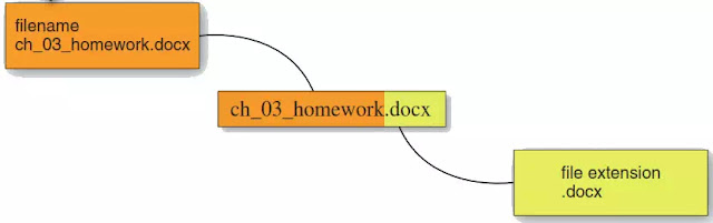 Figure 1 A file name includes a name and an extension to identify the contents and type of files.