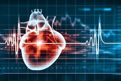 علاج امراض القلب بالأعشاب