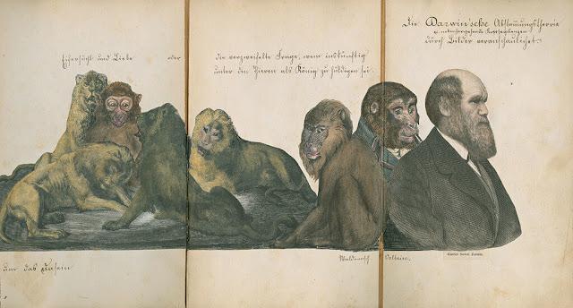 Darwin sufrio la evolución