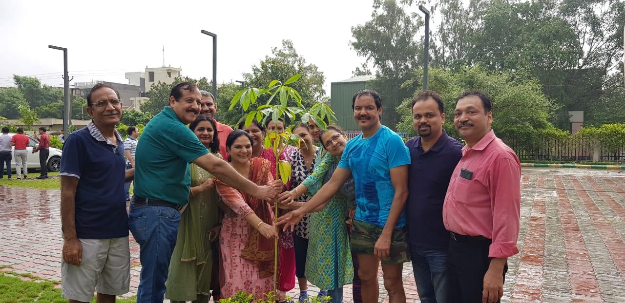 आईएमए फरीदाबाद ने फ्रूट और ऑर्नामेंटल के पौधे लगाए : डॉ  पुनीता हसीजा प्रधान