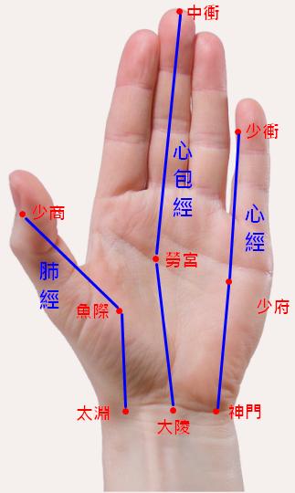 手掌穴道-手背穴位經絡-中衝穴、少府穴、神門穴、大陵穴、勞宮穴、少商穴、魚際穴、太淵穴