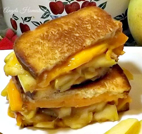 Home Sweet Homestead: Apple Pie Grilled Cheese Sandwich