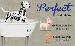 Pets Shower Attachment