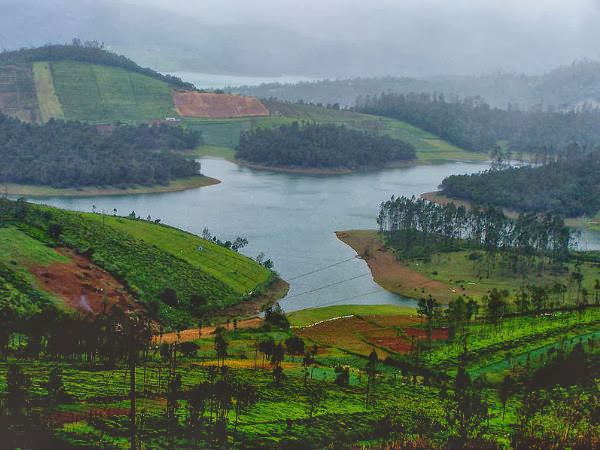 Ooty Hill View