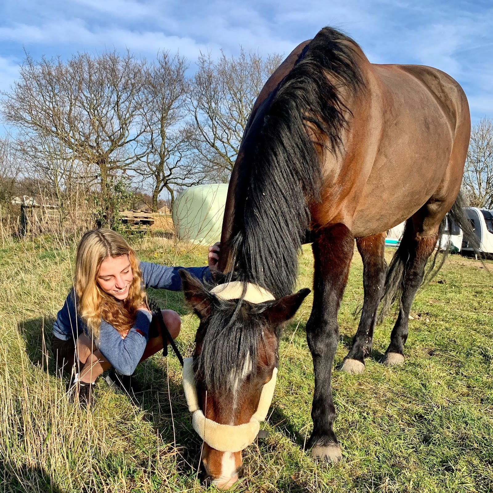 equestrian; love horses; girl