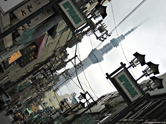 Principales Observatorios de Tokio: Tokyo Skytree