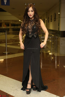 Angela Krislinzki in Transparent Black Gown at Rogue Movie Teaser Launch 1st March 2017 042.JPG