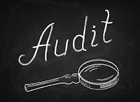 project%2Baudit - Types of Project Audit
